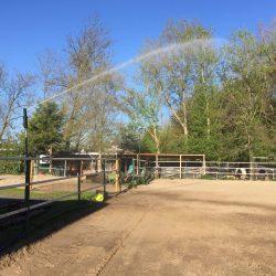 Paardenbak sproeien met grondwater #2